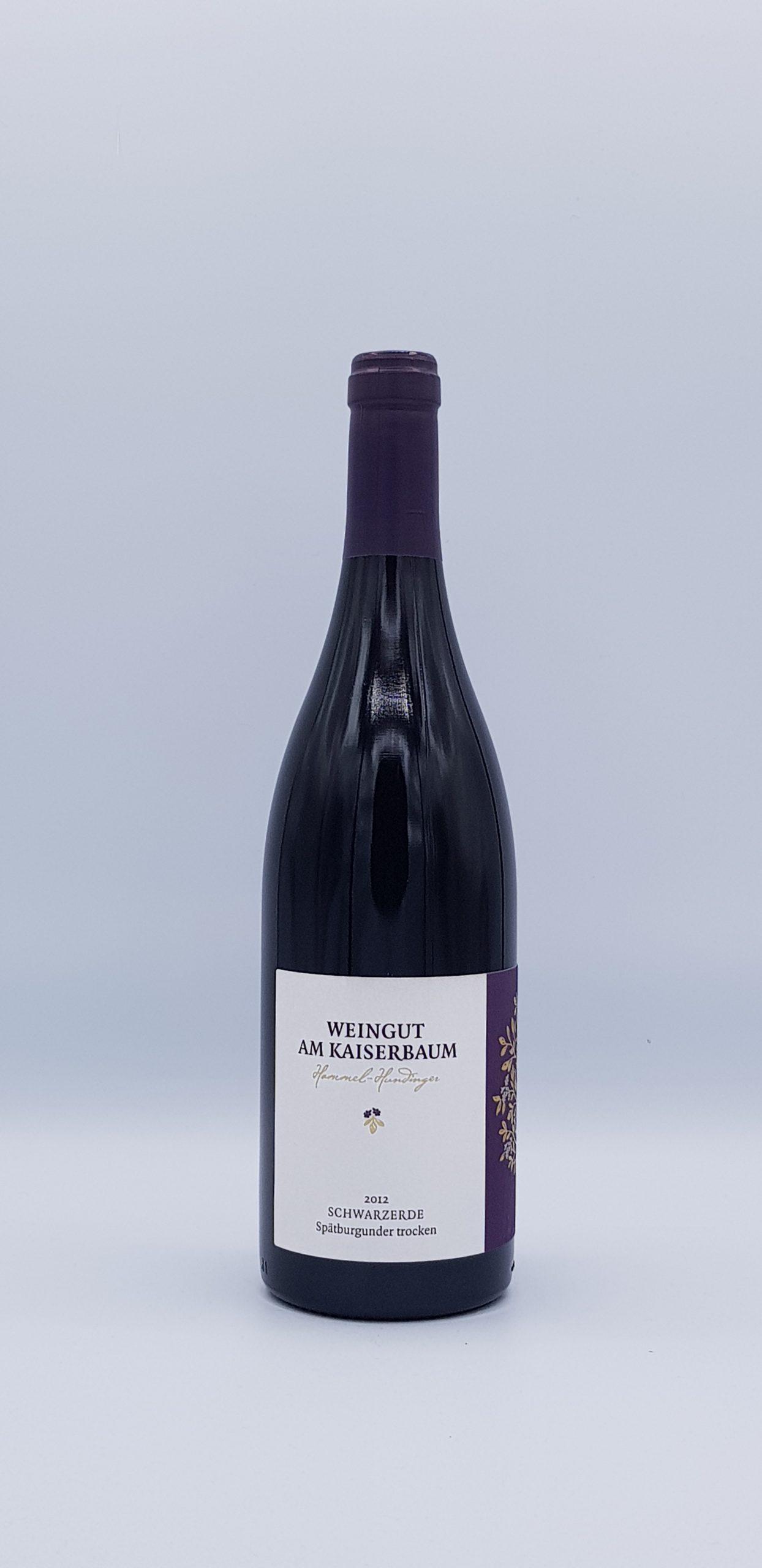 patburgunder Troken 2012 (Pinot)